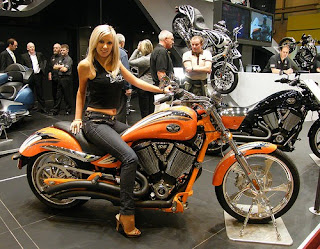 harley chick is looking for riding buddies