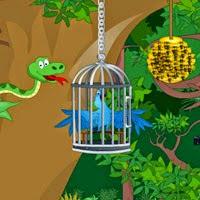 Juegos de escape Rio Escape