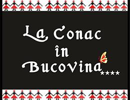Descopera Bucovina!