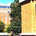 Oregon State University - Oregon State University Online Degrees