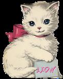 Blogowy kotek:}