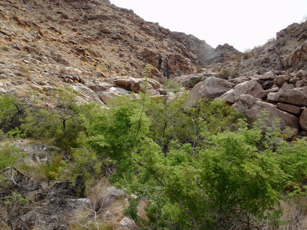 Ascending to Ireteba South Peak Saddle