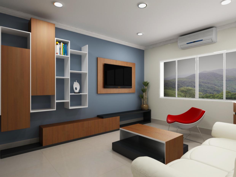 Interior designer on tv