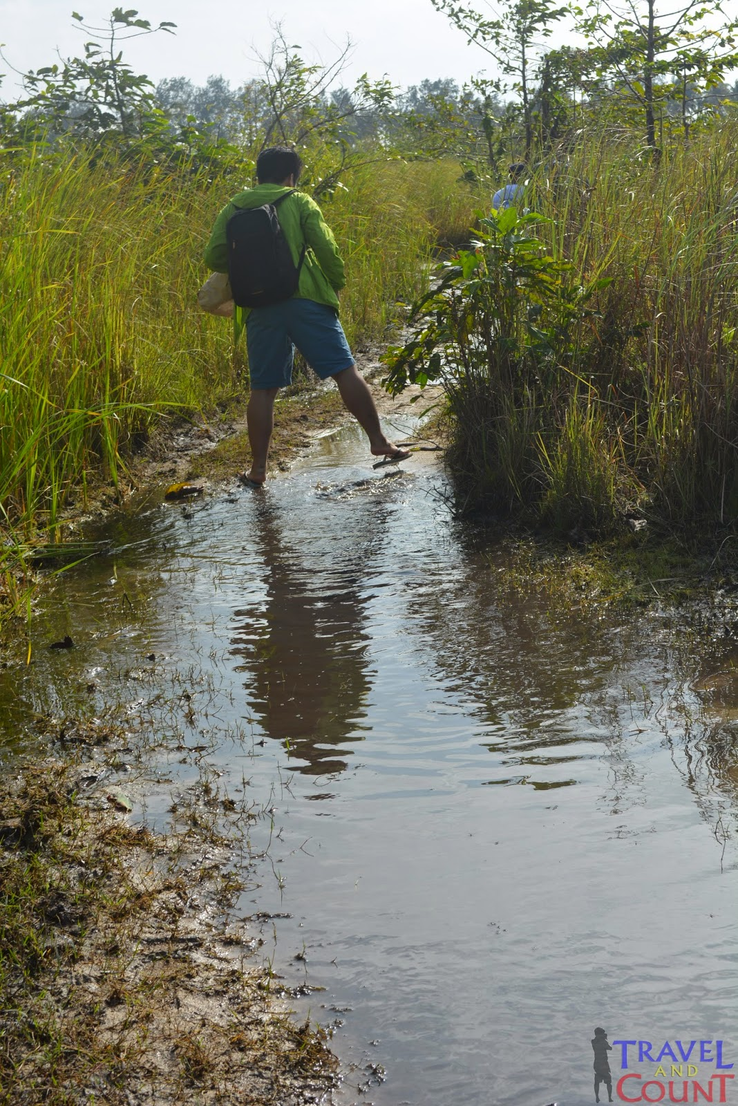 Swampy Areas in Cagbalete Island
