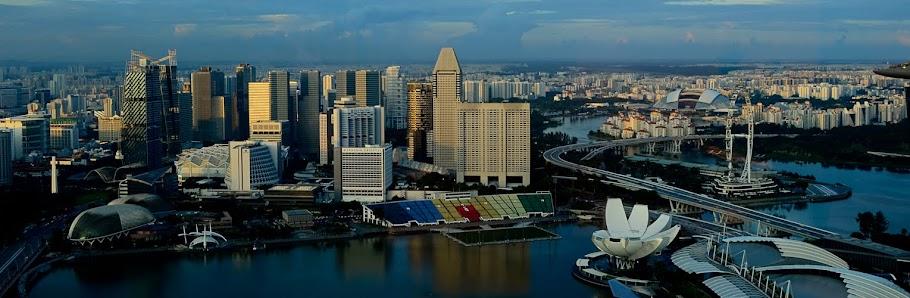 My Singapore News
