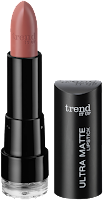 Preview: Die neue dm-Marke trend IT UP - Ultra Matte Lipstick 050 - www.annitschkasblog.de