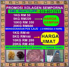 PROMOSI RUMPAI LAUT