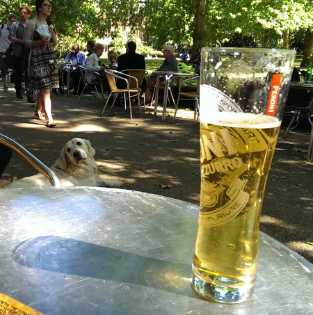 London notes: hanging out with nice dogs and pints of beer in Russell Square