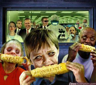 GMO fast fooding