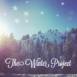 introducing: the winter project