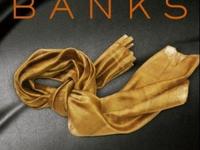 Resenha: Proteja-me -  Trilogia Slow Burn - Livro 01 - Maya Banks