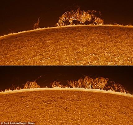 bentuk permukaan matahari