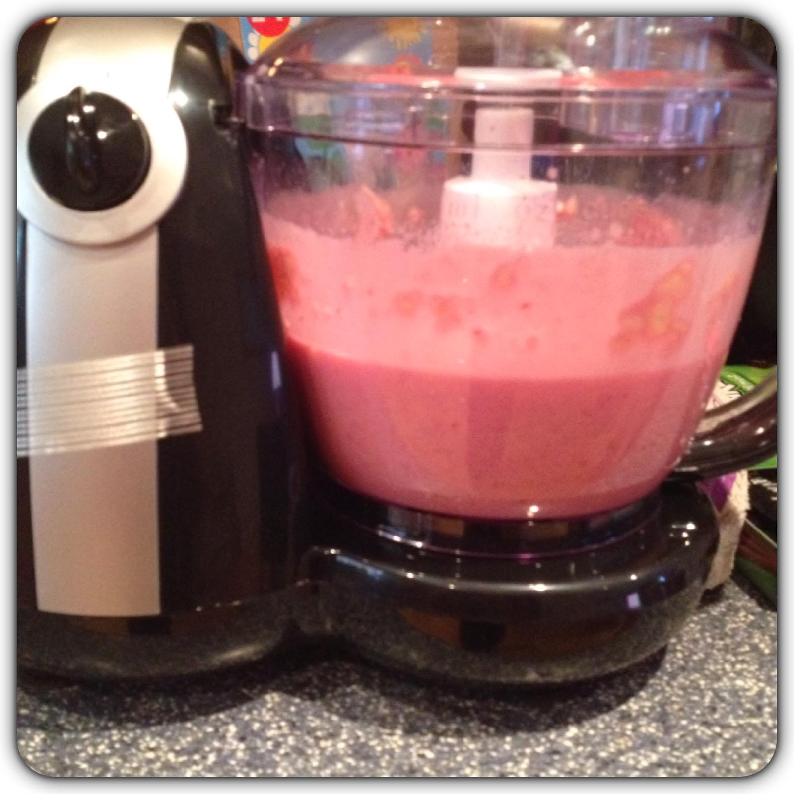 wilkinsons food processor smoothie maker