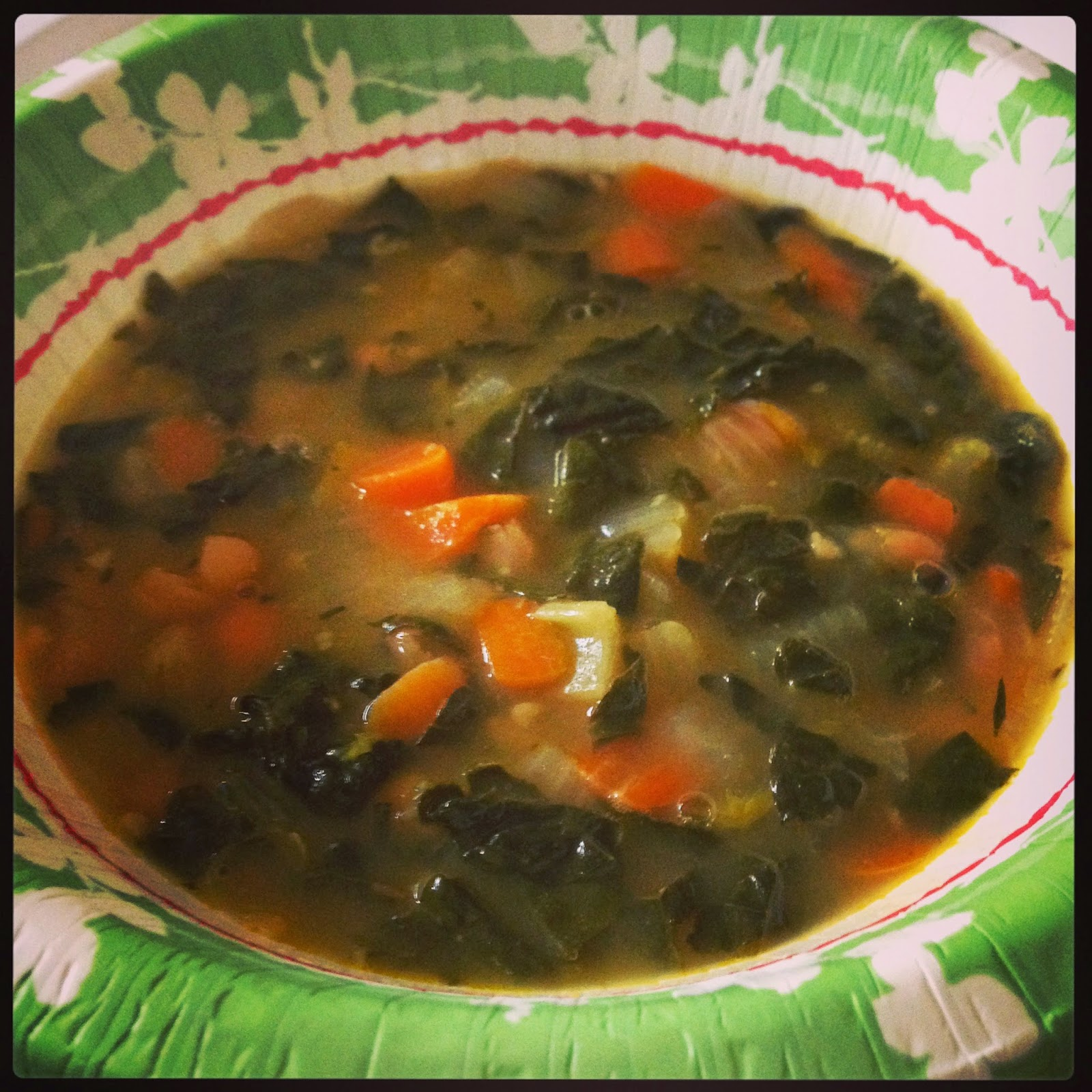 Kale and Cannellini Bean Soup | 21st Century Urban Pioneers