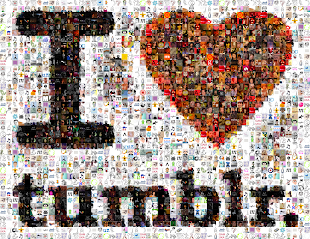 FOLLOW US ON TUMBRL