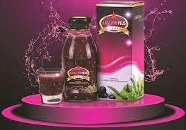 Obat Herbal Wasir