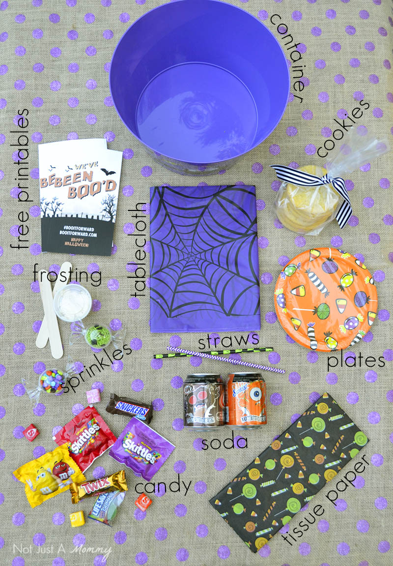 What's inside a BOO It Forward kit...