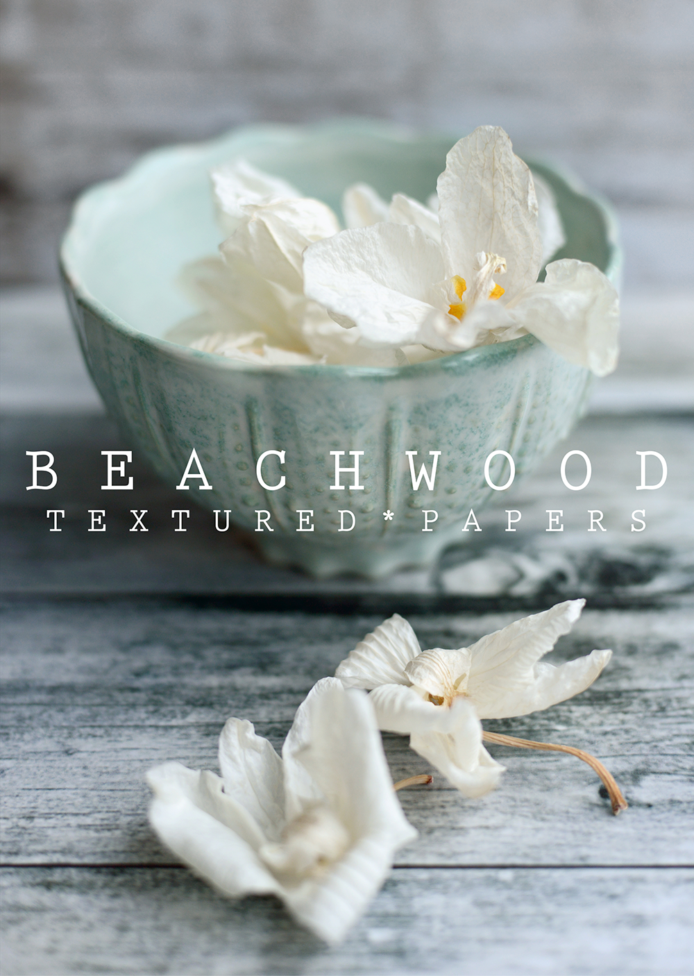 Beachwood Textured Papers