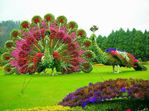Jardim Encantado - Um Luxo!
