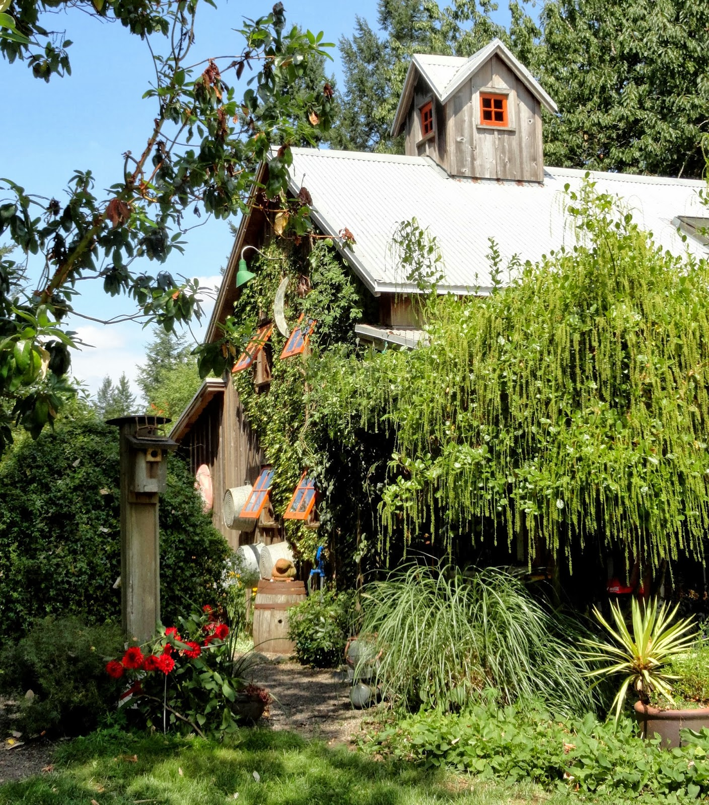danger garden: The Garden of Sampson and Beasley (it\'s a real place!)