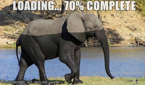elefante tomando banho, loading