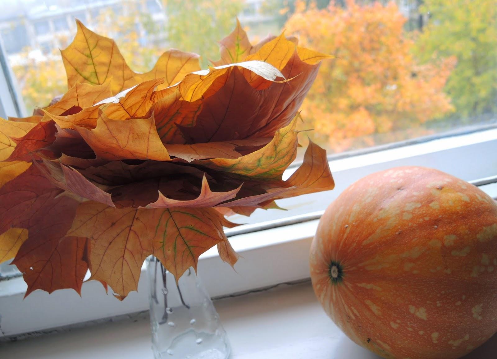 листья кленовые золотая осень тыква