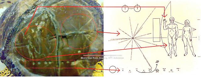 Penemuan Batu Tua Misterius di NTT Bergambar Simbol UFO