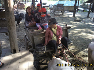 CHIANGMAI TOUR SERVICE TO JOAN'S FAMILY ON 26TO29 DEC 2013 ChiangMai Tour By Local ChiangMai Tour Guide - www.chiangmai4u.com
