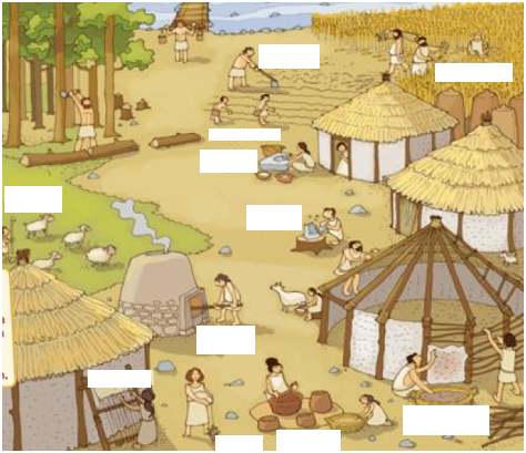 imatge neolític
