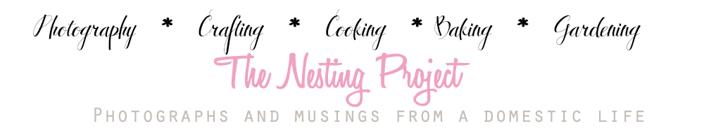 The Nesting Project
