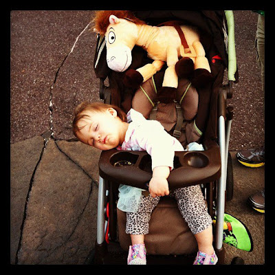 Disneyland Stroller Review
