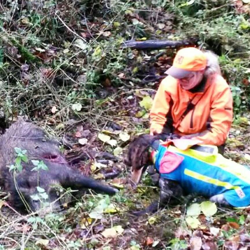 Jagd ohne Hund ist Schund
