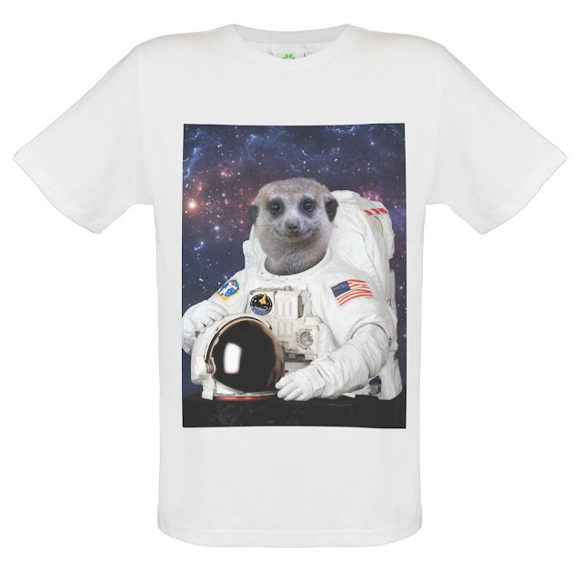 Meerkat Astronaut