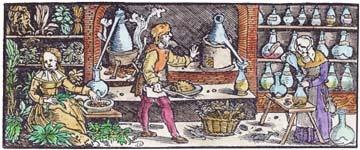 Ladrão de Aromas - por Ane*Walsh