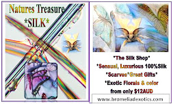 Bromeliad Exotics Silk Collection