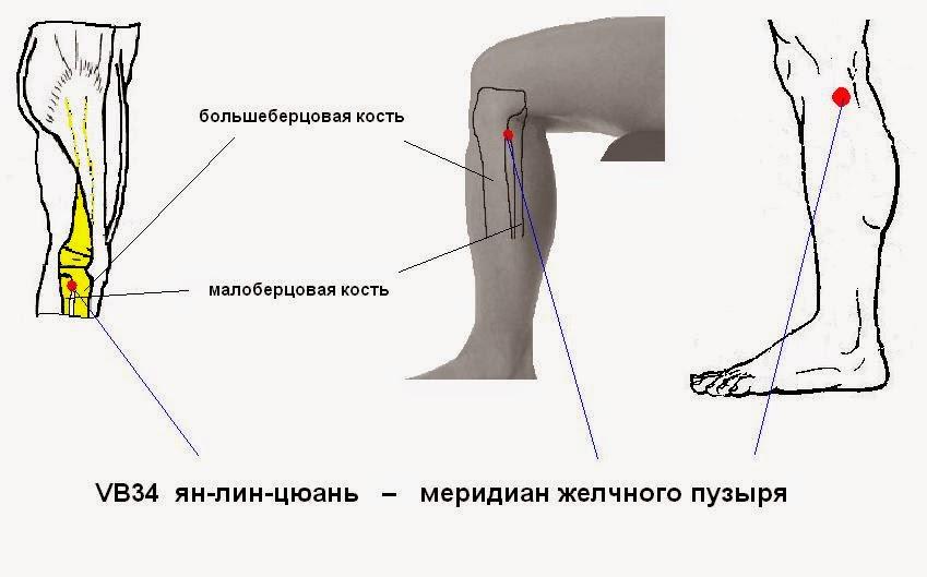 Гальвана пластика коленного сустава как разработать коленный сустав после операции
