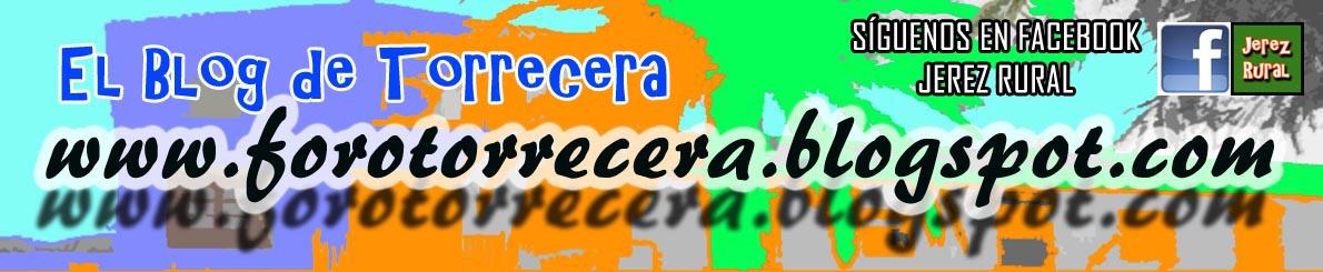 forotorrecera.blogspot.com