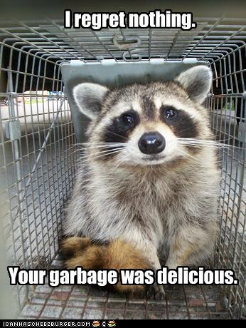 [Image: funny-pictures-raccoon-ate-your-garbage.jpg]