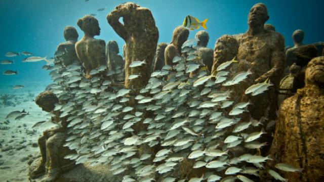 5 The world's most unique underwater adventures