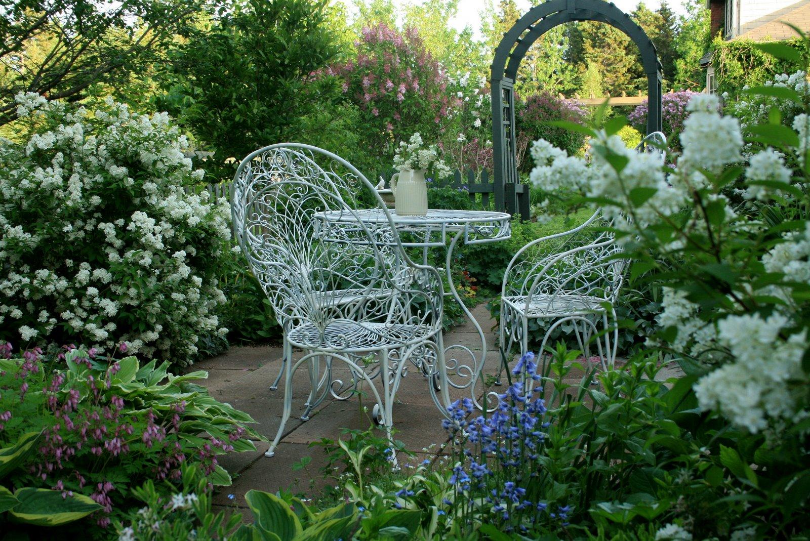 aiken house gardens early spring garden tea. Black Bedroom Furniture Sets. Home Design Ideas