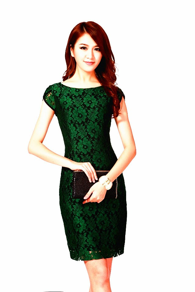 Oriental Rose Green Lace Short Sleeve OL Dress