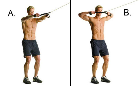 IRFitness: Posterior Deltoid Exercises