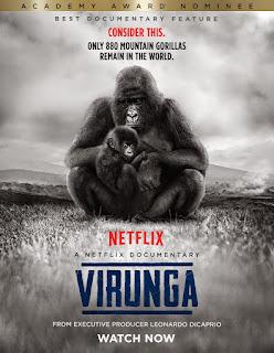 Virunga Dublado Online