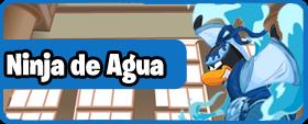 Ninja de agua