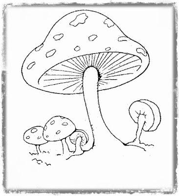 http://1.bp.blogspot.com/-A-kOFgCj82E/VWY_qFbJ1bI/AAAAAAAAN-U/mWsTAMDGu5k/s400/mushroomb.jpg