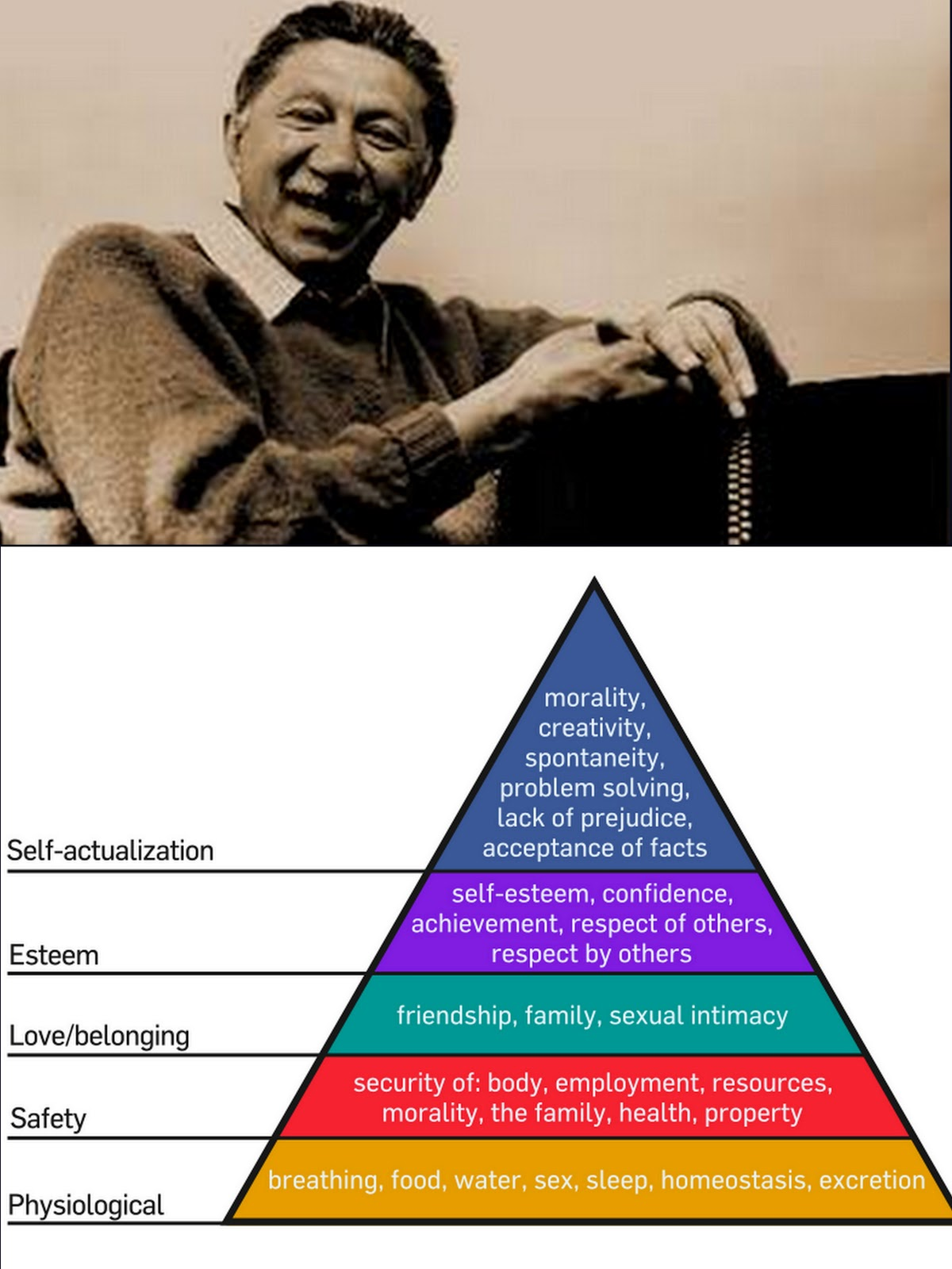 whimsies  psychologist abraham maslow u0026 39 s hierarchy of needs