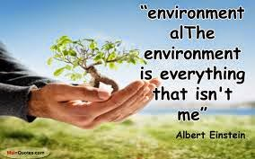 The environment is every... - Picture quotes