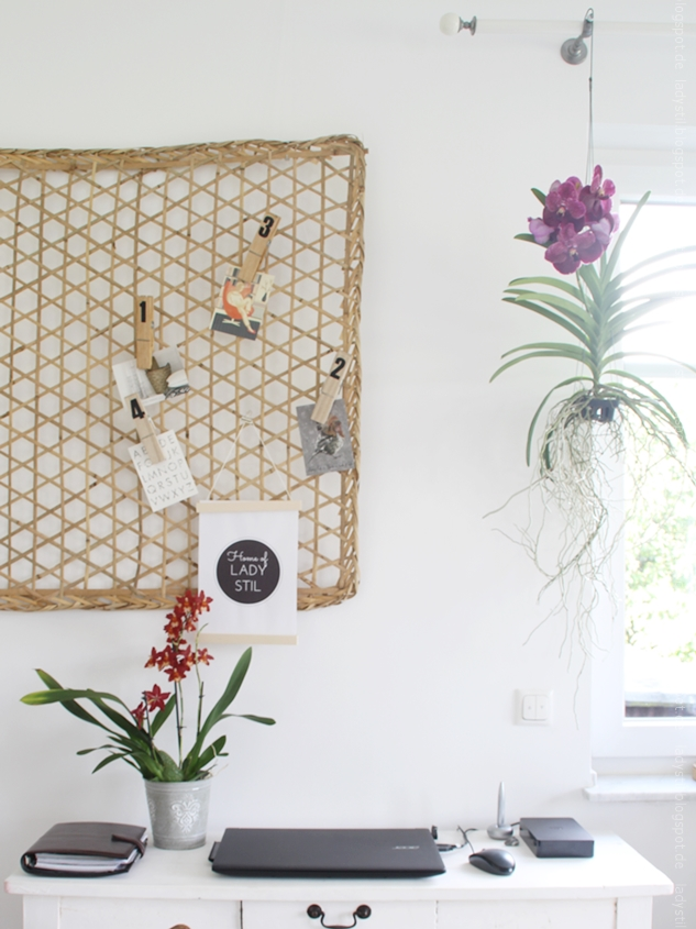hängende Orchidee im Office