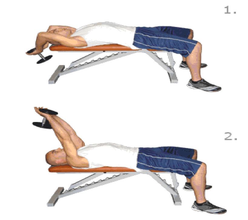 Step Exercises and Fitness: Chest Exercises : step 2 : bent-arm ...
