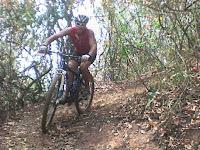 Puro Pedal